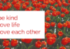 1. Be Kind 2. Love Life 3. Love Each Other